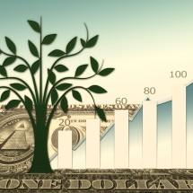 Погоня за прибылью, или Что способствует финансовому развитию бизнеса в условиях недоразвитого капитализма